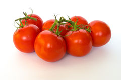 Tomato. Cluster is located on a white background Royalty Free Stock Photos