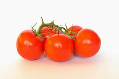Tomato. Cluster is located on a white background Stock Photos