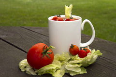 Tomato Cocktail Stock Images