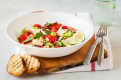 Tomato and Coconut Milk Fish Stew Royalty Free Stock Photos