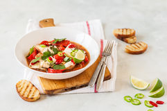 Tomato and Coconut Milk Fish Stew Royalty Free Stock Photography