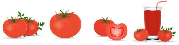 Tomato collection. Photo realistic fresh red ripe tomatoes with green leaves isolated on white background. 3d vector. Tomato collection, tomato juice. Photo vector illustration