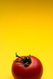 Tomato - copyspace. Tomato against yellow background, Great for advertisement Stock Images