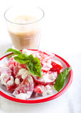 Tomato and cottage cheese salad Stock Image