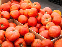 Tomato Crate Stock Images