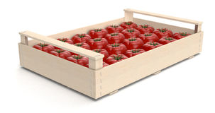 Tomato in crates Stock Photos