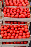 Tomato in crates Stock Photo