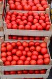 Tomato in crates Stock Photo