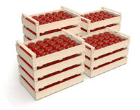 Tomato in crates Royalty Free Stock Images
