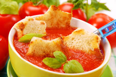Free Tomato Cream Soup With Croutons Royalty Free Stock Images - 11622689