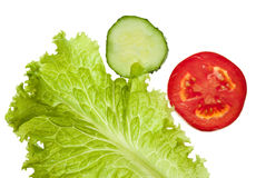 Tomato, cucumber and lettuce Stock Images