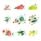 Tomato and cucumber miniatures Stock Images