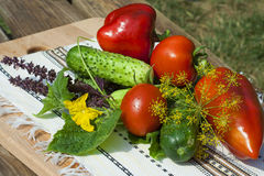 Tomato, cucumber, pepper on wooden table Royalty Free Stock Photography