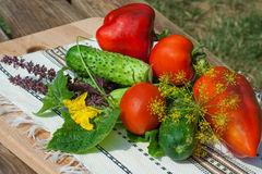 Tomato, cucumber, pepper on wooden table Stock Photo