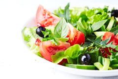 Tomato and Cucumber Salad with Black Olives Royalty Free Stock Image