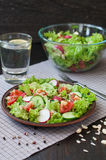 Tomato and cucumber salad with lettuce leafes Royalty Free Stock Photo