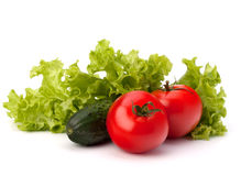 Tomato, cucumber vegetable and lettuce salad Stock Photos