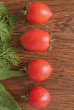 Tomato direction Royalty Free Stock Photos
