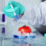 Tomato DNA change. Microbiology experimant Stock Photos