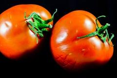 Tomato on drak black Royalty Free Stock Images