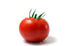 Tomato with drop of water stock photography