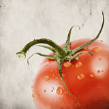 Tomato with drops on grunge background Stock Photography