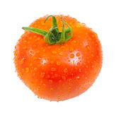 Tomato with drops water Royalty Free Stock Photos
