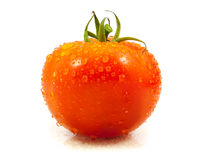 tomato with drops Stock Photography