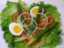 Tomato,egg and asparagus salad. A simple salad easy to do royalty free stock photo