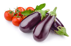 Tomato with eggplant. Vegetables isolated on white Stock Photography