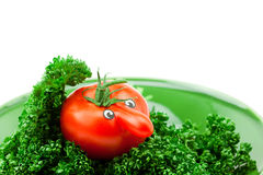 Tomato with eyes lying on a plate with greens Royalty Free Stock Photography