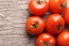 Tomato on a fabric Royalty Free Stock Photography