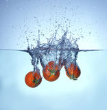 Tomato falling and splashing into water Stock Photography