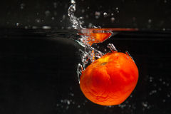 Tomato falling in water Royalty Free Stock Photos