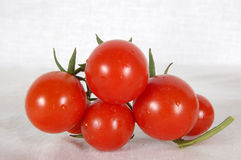 Tomato family. Some ripe, tasty, juicy, red tomatoes on a stalk on a white background Stock Photo