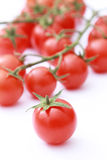 Tomato on focus Stock Photography