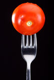 Tomato on a fork Stock Photography