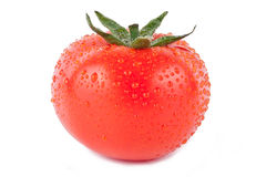 Tomato fresh Royalty Free Stock Image