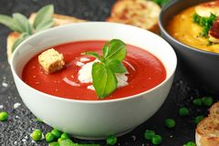 Tomato and fresh basil soup with garlic, cracked pepper corns, served with parmesan cheese, toast bread.  stock photography