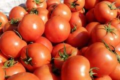 Tomato. Fresh tomato in the market Royalty Free Stock Photography