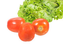 Tomato and fresh salad. Pic of Tomato and fresh salad Royalty Free Stock Image