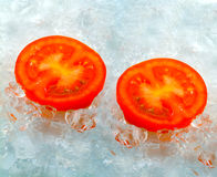 Tomato  frozen in ice Stock Images