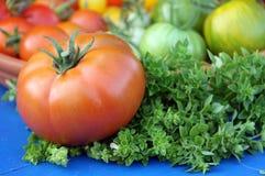 Tomato fruit and basil Royalty Free Stock Photos