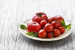 Tomato fruits with basil on wooden background Stock Photo