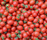 Tomato fruits at the market in Taichung, Taiwan Stock Image