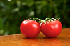 Tomato garden. Couple of tomatoes on a wooden table in a vegetable garden Royalty Free Stock Photography