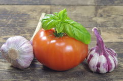 Tomato garlic and basil Royalty Free Stock Photography