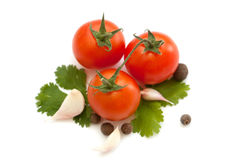 Tomato and garlic vegetables with parsley spice isolated Stock Photos