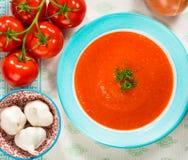 Tomato Gazpacho Soup Stock Image
