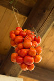 Tomato grape from ceiling Royalty Free Stock Photography